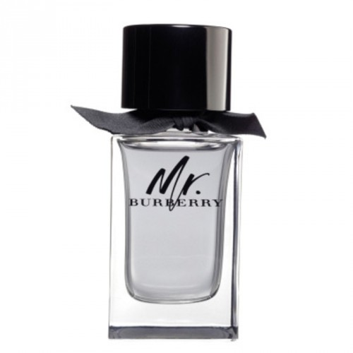 Mr.Burberry for Men woda toaletowa spray 50ml